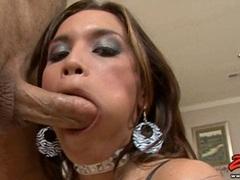 Busty latina Renae Cruz kneels down and blows a long hard cock