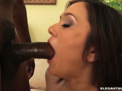 CeCe Stone brunette babe performing a hard suck job