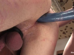 Madison Young crams a dildo up this blokes tight ass