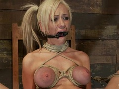 Whore Kaylee Hilton is tied up & tormented