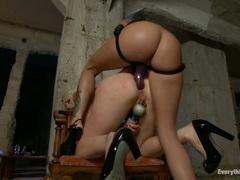 Sizzling Lorelei Lee is anal toy fucked by Haley Wilde