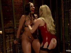 Horny Kelly Divine is tied up & teased by Aiden Starr