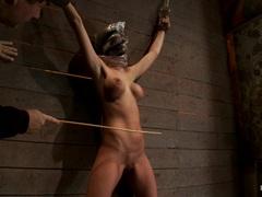 Horny slut Kaylee Hilton is tied up & tormented