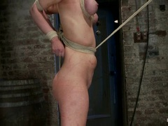 Horny Cherry Torn is tied up and lifted into the air