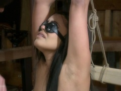 Cock sucking babe bound and blindfolded